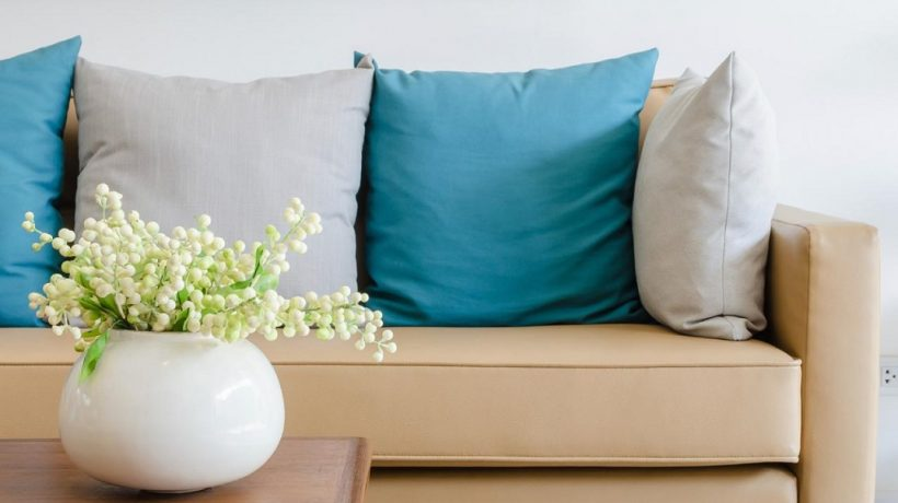 How to clean vomit from suede couch